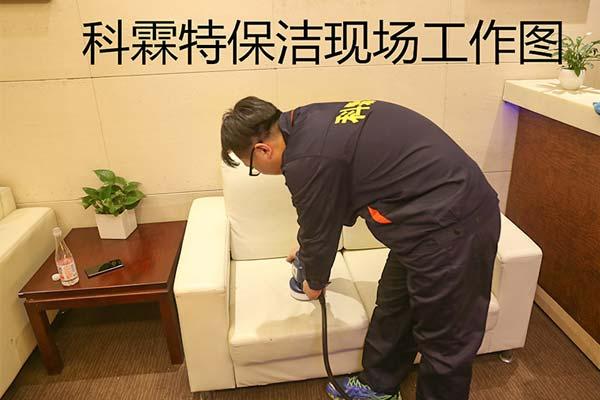 济南上门杀虫公司:办公室出现蟑螂怎么办?