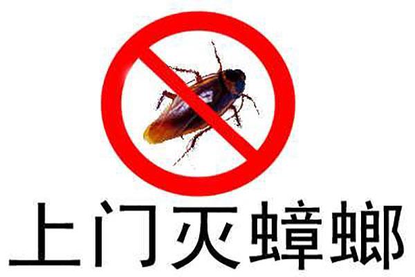 山东杀虫公司