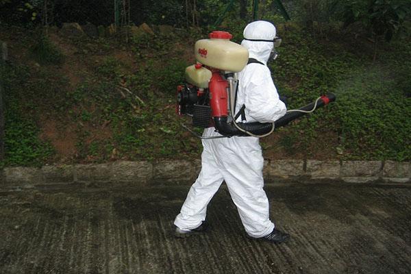 山东消杀公司教您1分钟解决苍蝇的生命的方法
