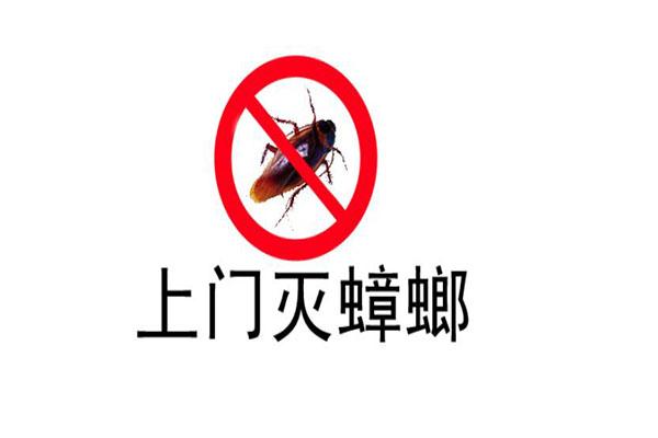济南灭蟑螂