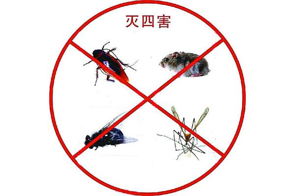 济南灭虫公司