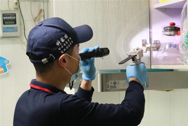 济南消杀公司:预防和控制老鼠的方法